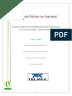 Adriana Caso TELMEX 2.docx