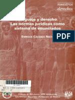lenguaje y derecho caceres nieto.pdf
