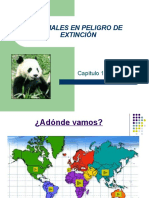 Presentación Power Point sobre animales en peligro de extinción