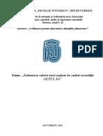 Evaluarea Intreprinderii Diagnosticul Financiar Contabil-OLTUL SA