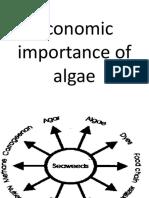 Economic Importance of Algae