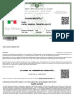 CURP_CALC020805MPLRPRA7.pdf