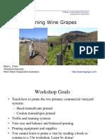 pruning 2012.pdf