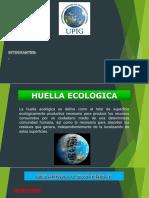 Ecologia Trabajo 01