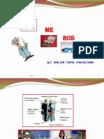 POLIMERO.pdf