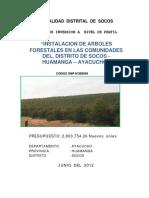 FORESTAL SOCOS.pdf