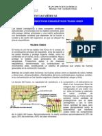 T.CONECTIVOS.ESQUELETICOS_OSEO_PLAN_COMUN_CIENCIAS_MEDICAS_2009[1]