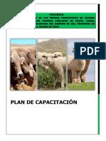 CAPACITACION JULI.docx
