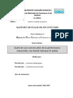 Rapport Nestlé Audit de suivi.docx