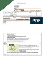 SESION 22 - cta sist nervioso somatico.docx
