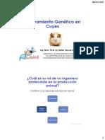 mejora_cuyes.pdf