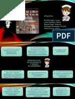 diapositivas de modelos de enfermería