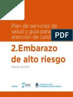 02_EmbarazoAR_1608.pdf