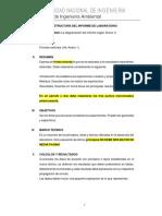 estructura  de  informe de fisica 2