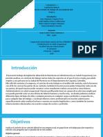 Actividad 2. Análisis del Contrato Individual de Trabajo =Juan Alejandro Urquina - Leidy Quiroz - Maria Sarmiento  y Dania Campos