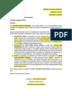 DESAHOGO DE PRUEBAS.docx