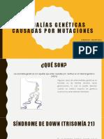 Anomalías Genéticas Causadas Por Mutaciones