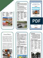triptico Los desastres naturales smj.docx