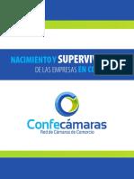 Nacimiento y Supervivencia de las empresas enColombia.pdf