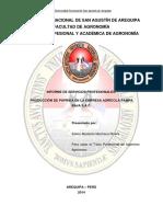 TESIS CULTIVO DE PAPRIKA PAMPA BAJA.pdf