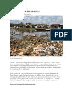 La Contaminación Marina