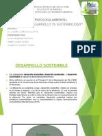 DESARROLLO VS SOSTENIBILIDAD.pptx