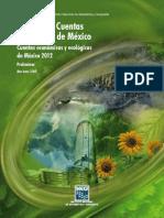 SCN Cuentas ecologicas.pdf