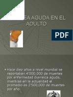 diarreaagudaeneladulto2-130831173703-phpapp02.pdf