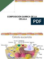 composicion quimica celular.ppt
