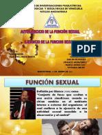 ejerciciodelafuncionsexual-160312001819