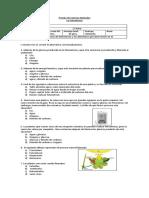 Prueba Fotosintesis 6 Docx
