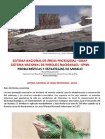 4. SINAP,SPNN,problemáticasyestrategiasECCI (1) (1).pdf