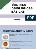 SIEMBRA- PRACTICA.pptx