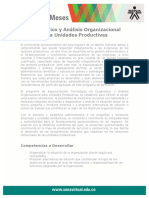 diagnostico_analisis_org_unidas.pdf