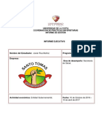 GUIA DEL  INFORME EJECUTIVO.docx