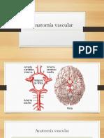 324367579 El Cerebro Humano y Los Procesos Psiquicos a r Luria 1