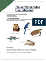 VERTEBRADOS E INVERTEBRADOS.docx