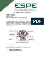 COMPRESOR.docx