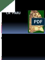 05_ cA PARU