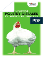Pocket Book; Poultry Diseases