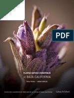 PLANTAS_NATIVAS_COMESTIBLES_ISSUU.pdf