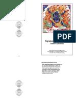 Vajrapani-Bhutadamara.pdf
