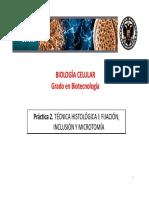 Diapositivas_Practica_2.pdf