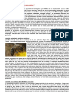 choix abeilles