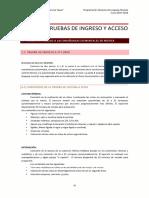 Anexo Pruebas de Ingreso y Acceso Parte b