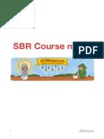 ACCA SBR Course Notes