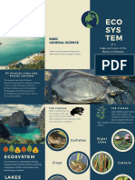 Sample Brochure about ecosystem of lakes