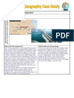 Three Gorges Dam Case Study Template (1).docx