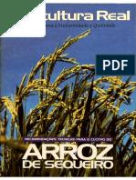 Recomendacoes-tecnicas-arroz-sequeiro.pdf