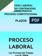 Plazos Proceso Laboral Contencioso Administrativo y Constitucional